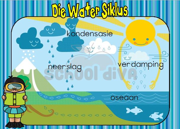 Free Worksheets life skills grade 5 worksheets : Water Siklus - School Diva